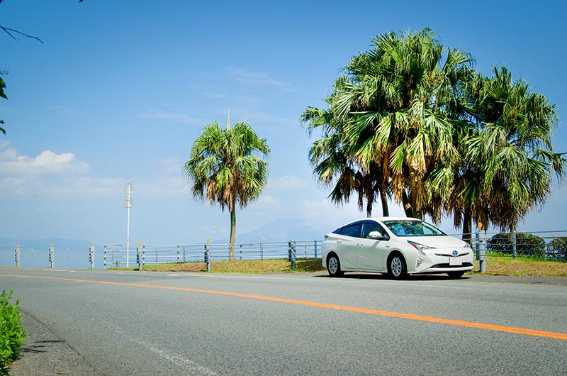 桜島や海を眺める海岸線を走る、カップルにも人気のドライブルートです。